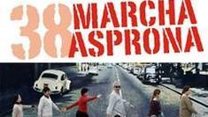 marcha-asprona--235x133